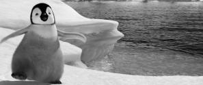 dblog-icefeet