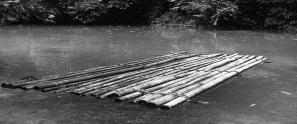 dblog-raft