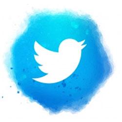 Social Media Twitter Link